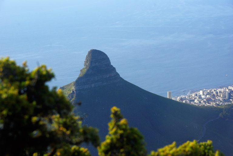 Leos Head Südafrika